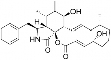 Цитохалазин В