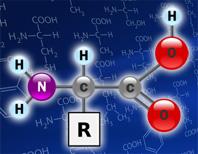 L-глутаминовая кислота