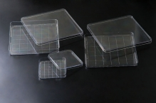 Чашки Петри квадратные 245х245х20 мм, стер.