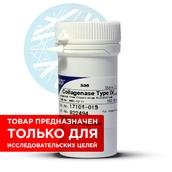 Коллагеназа тип 4, нестерильная